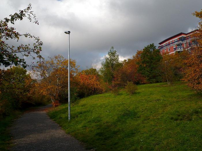 Cesta parkem pod Galerií nad Vltavou